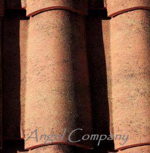 Tigla ceramica Italiana ZENITH AT11 CLASSICA PICA ambient